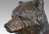 Reflection - Profile